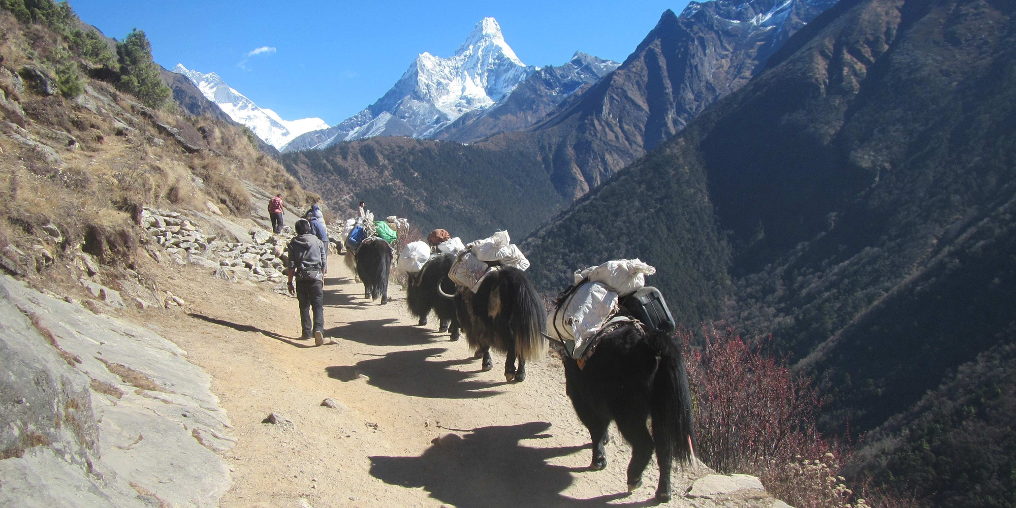 Slow and Easy Trekking in Everest